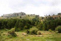 Visita la Ciudad de Cuenca